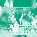 Nachhaltigkeit für alle – Konzepte zur Demokratisierung des Ernährungssystems